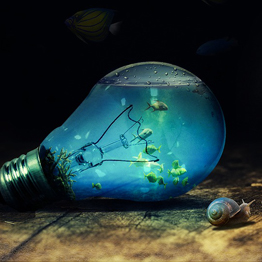 a goldfish in a lightbulb, an example of creative thinking
