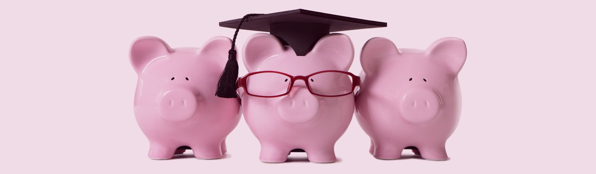 Row of pink piggy banks, one wearing glasses and academic cap